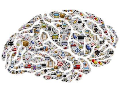 brain-954823_640